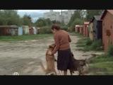 Собаки приюта в сериале
